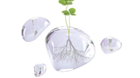 Au-delà de la bio : les initiatives responsables des entreprises à l'honneur à Natexpo 2021